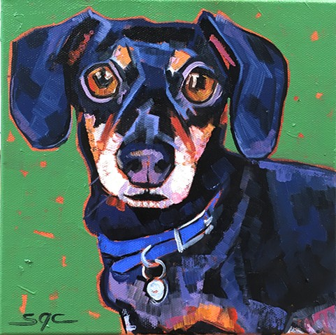 Color Dog portrait, pet portrait, dog portrait, custom oil dog portrait, painting of a miniature Dachshund, Color Dog portrait by Sarah Gayle Carter