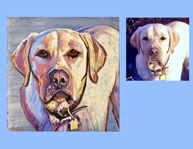Color Dog portrait, pet portrait, dog portrait, custom oil dog portrait, painting of a Yellow Lab, Labrador Retriever, Color Dog portrait by Sarah Gayle Carter