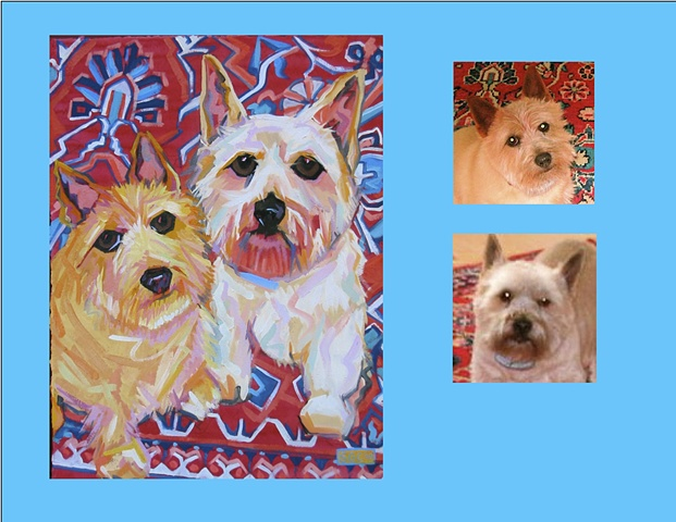 Rufus and Peaches are Norwich Terriers  This is their Color Dog portrait