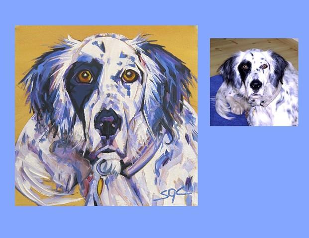 Color Dog portrait, pet portrait, dog portrait, custom oil dog portrait, portrait of an English Setter, portrait of Setter, Color Dog portrait by Sarah Gayle Carter