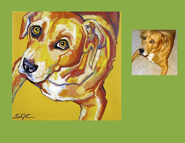 custom dog portrait, portrait of a yellow dog, Color Dog portrait by Sarah Gayle Carter, dog painting