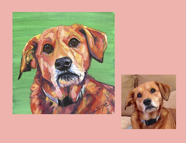 Color Dog portrait, pet portrait, dog portrait, custom oil dog portrait, portrait of a terrier, portrait of a Lab Golden mix, Color Dog portrait by Sarah Gayle Carter