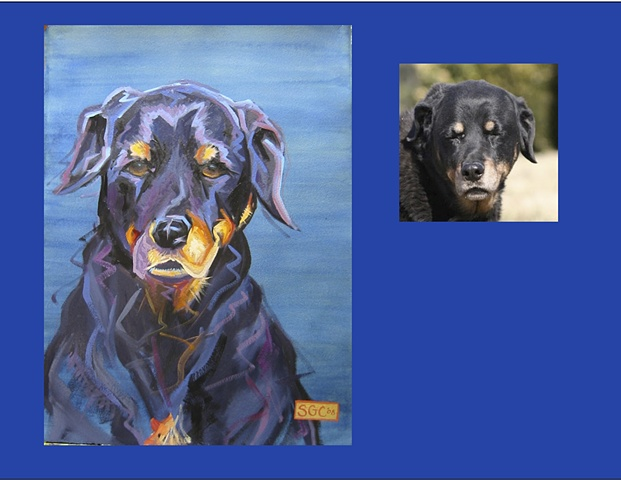 Heidi is a Rottweiler This is her Color Dog portrait