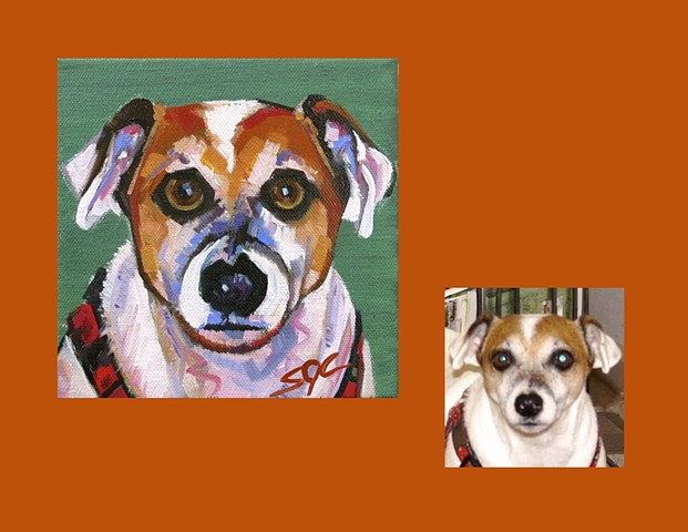 Color Dog portrait, pet portrait, dog portrait, custom oil dog portrait, portrait of a terrier, portrait of a Jack Russell, Color Dog portrait by Sarah Gayle Carter