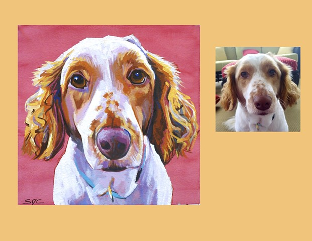 pet portrait, dog portrait, custom dog portrait, Color Dog portrait by Sarah Gayle Carter