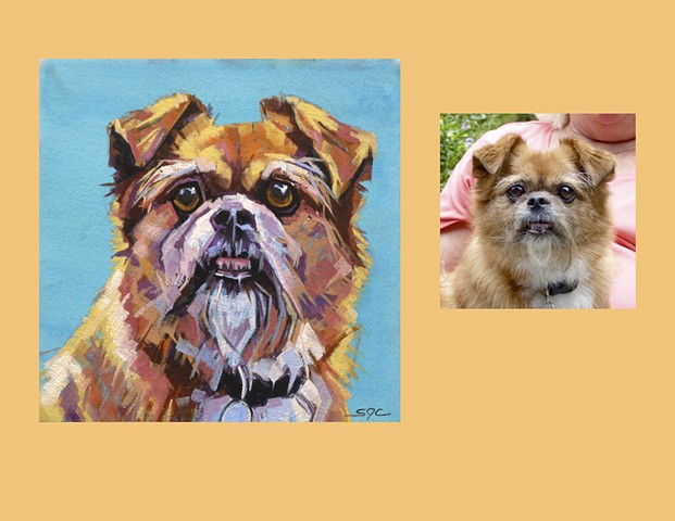 Color Dog portrait, pet portrait, dog portrait, custom oil dog portrait of a cute mutt, painting of a dog, portrait of a mixed breed, Color Dog portrait by Sarah Gayle Carter