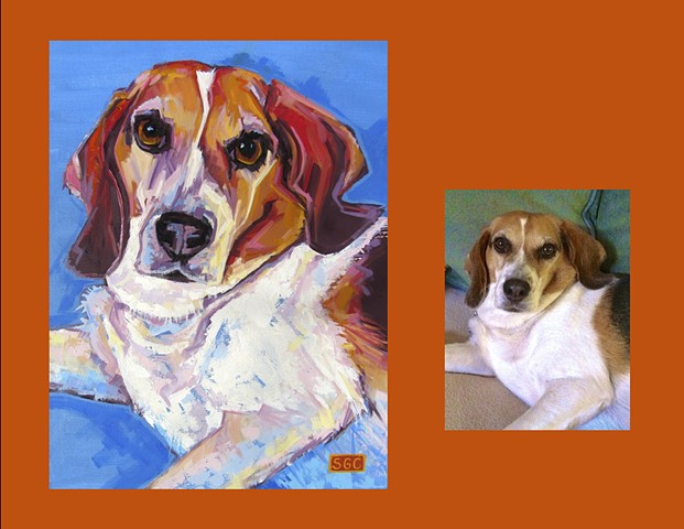 dog portrait, custom dog portrait, portrait of a Beagle, painting of a Beagle, Color Dog portrait, dog portrait by Sarah Gayle Carter