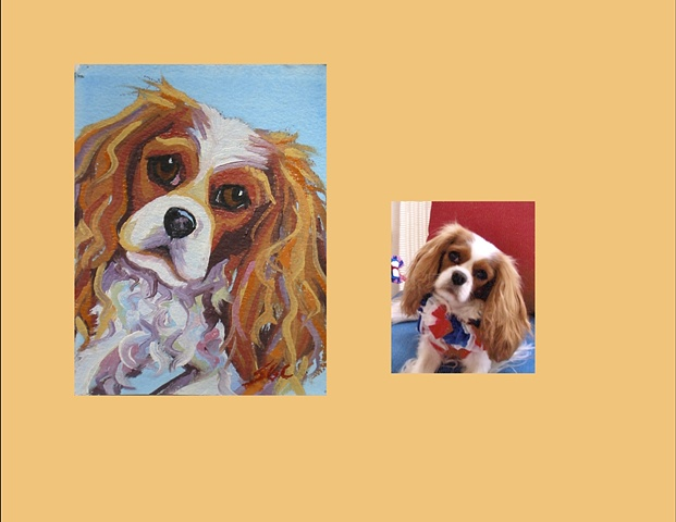 Lulu is a Cavalier King Charles Spaniel, This is her Color Dog portrait