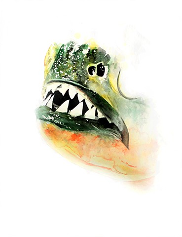 piranha watercolor painting by Corbett Sparks