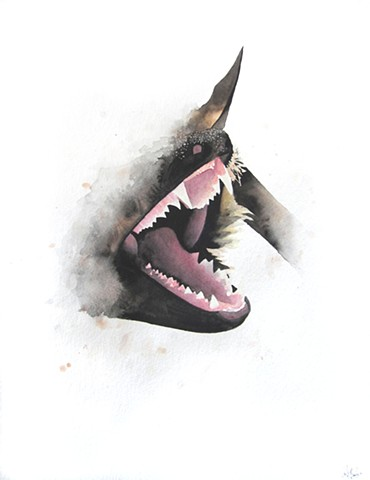 Bat fangs watercolor painting by Corbett Sparks