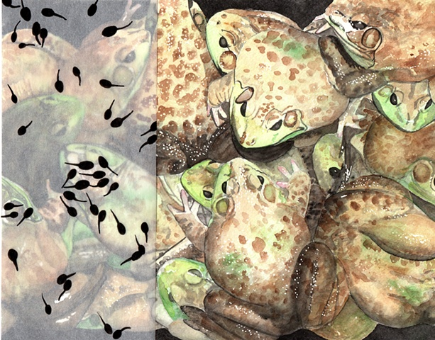 tadpoles and frogs painting