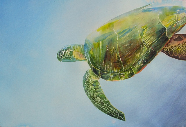 sea turtle painting by Corbett Sparks