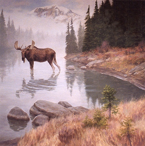 Interior mural, mural, wildlife, moose standing in water, mountains