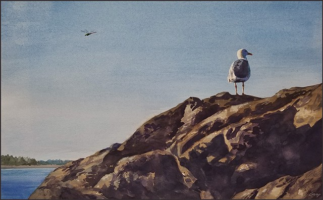 watercolor, seagull, rocks, nature, realist_art, landscape, seascape, sunlight