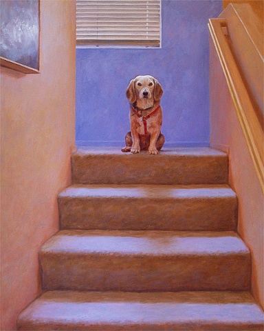 Interior stairway, dog sitting on landing, looking at viewer, yellow, orange, tan, blue.