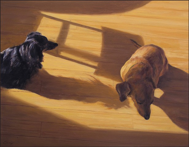 pets, dogs, sunlight, shadows, animals, psychology