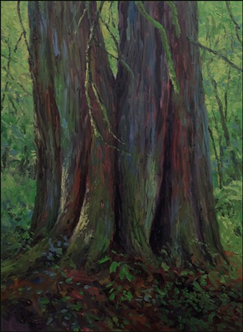oil, realist, landscape, forest, cedar, trees, woods, nature, representational