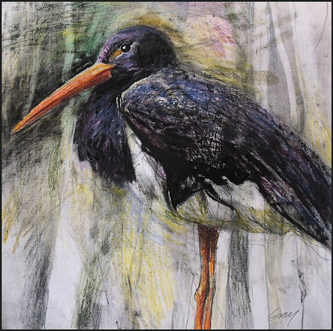 mixed media, drawing, bird, stork, wildlife, animal, nature