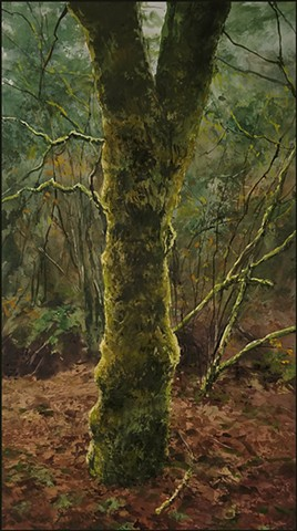 realist, landscape, woods, northwest, tree, moss, realism, nature forest, fine_art