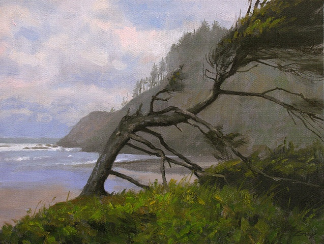 Seascape, foreground pine, rugged cliffs, Oregon, Ecola Beach