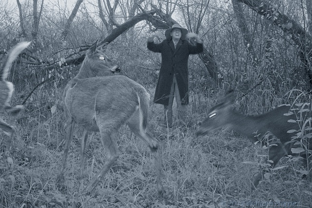 jakob and the whitetails 1