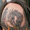 Phoenix Cover Up After