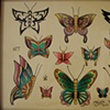 Butterfly Flash Sheet
