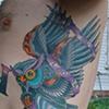 owl hourglass