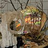 Mnemosyne_Detail_oblique Head Woods