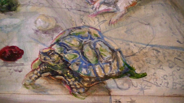 Self Portrait as Circe:Wood Turtle Detail