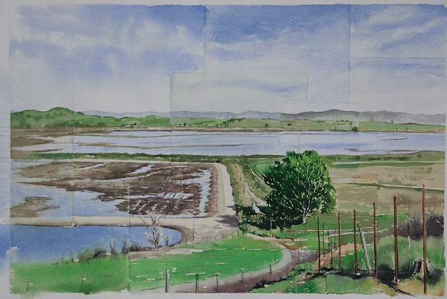 Sketch for Sonoma Creek Estuary