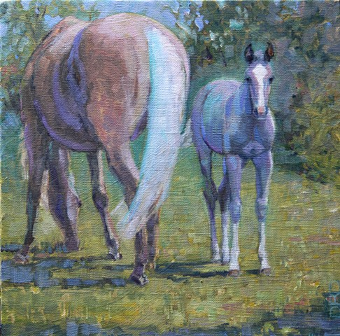 Foal looking forward with mare next to her in a pasture.