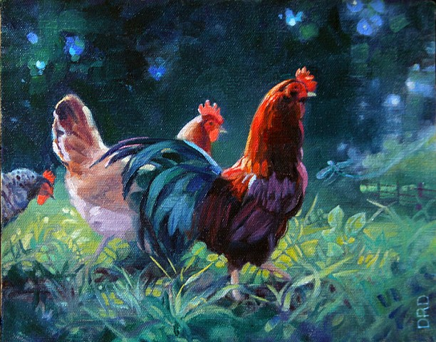 Rooster and hens in a summer meadow