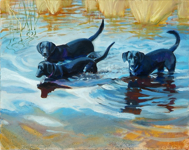 Those labs do love the water!