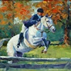 Grey Horse Jumping  •sold•