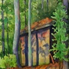 Shed in the Woods