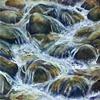 Rock Creek, Erwin, TN