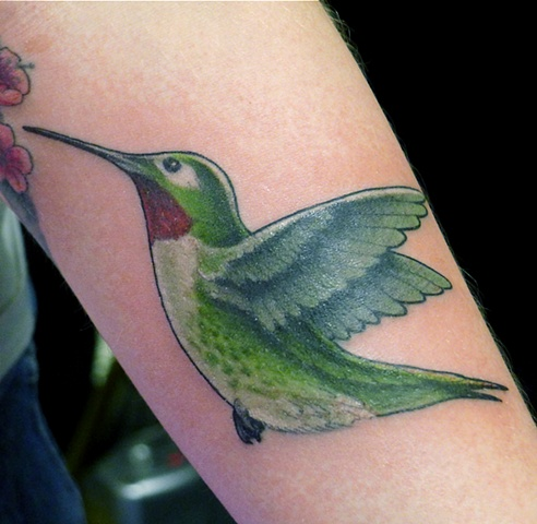 hummingbird colour tattoo by j majury