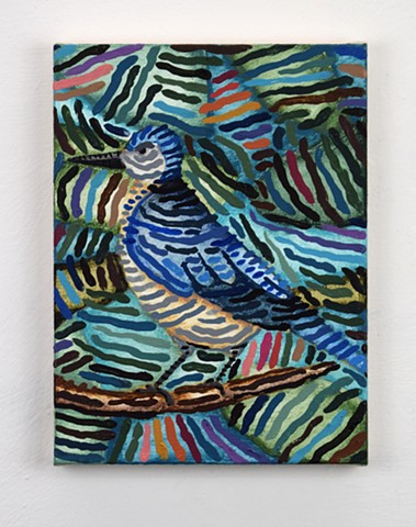 Untitled (scrub jay)