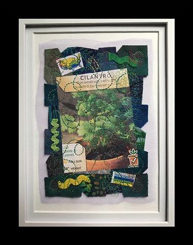 31  Seed Packet: Cilantro Fiber: Framed Contemporary Art Quilt
