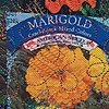 27    Flower Seed Packet: Marigolds