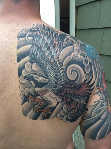 healed osprey tattoo
