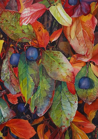 Watercolour, Calgary Artist, Conny Jager, Fall, Autumn, Leaves