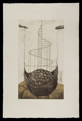 Etching, Aquatint
