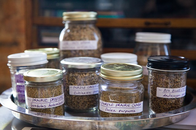 Jars of Chicago-area seeds for the seed bombs