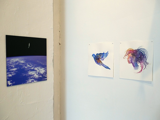 'Narwhal, Spacewalk' (left) 'The Parakeet Nebula' & 'The Parakeet's Wife' (right)