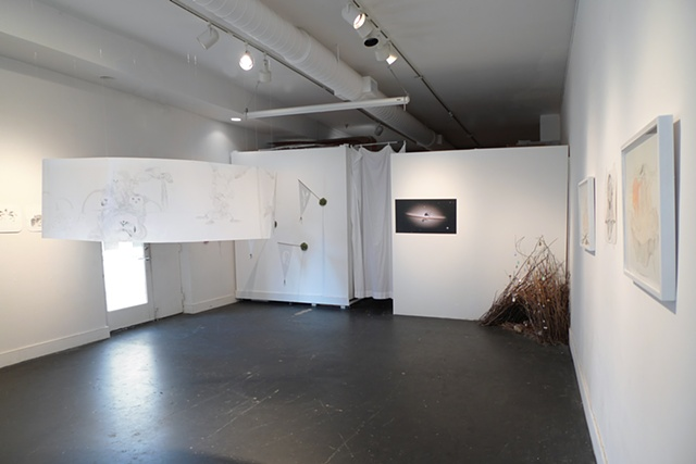 Installation view of Archipelago, main room