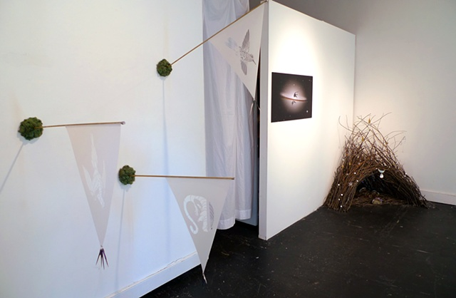 Installation view of 'Extinction Pennants,' 'Endless Thylacine' & 'My Bower I'