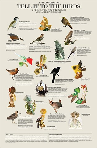 Field Guide for 'Tell it to the Birds'