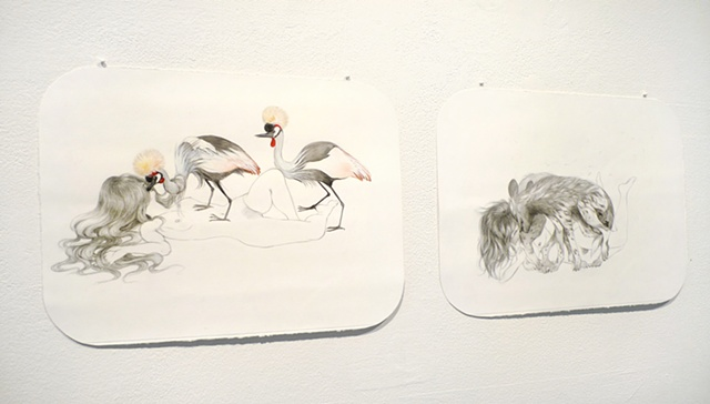 Installation view of 'Hungry for More (Nature/Nurture)' & 'Sibling Rivalry (Love Bites)